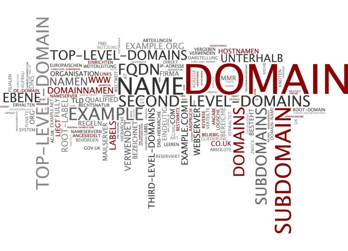 Co powinieneś wiedzieć o ograniczeniach w rejestracji domen?