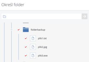Zawartość Twojego dysku w przeglądarce to ułatwienie przy tworzeniu kopii zapasowych.