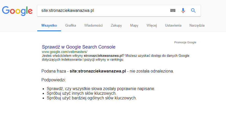 Wynik dla nieistniejącej nazwy witryny. Google nie znalazł takiej witryny w swoich zasobach.
