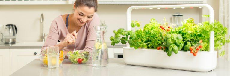 Smart Garden to #MistrzowieeCommerce. Uprawianie roślin w domu z użyciem nowych technologii.