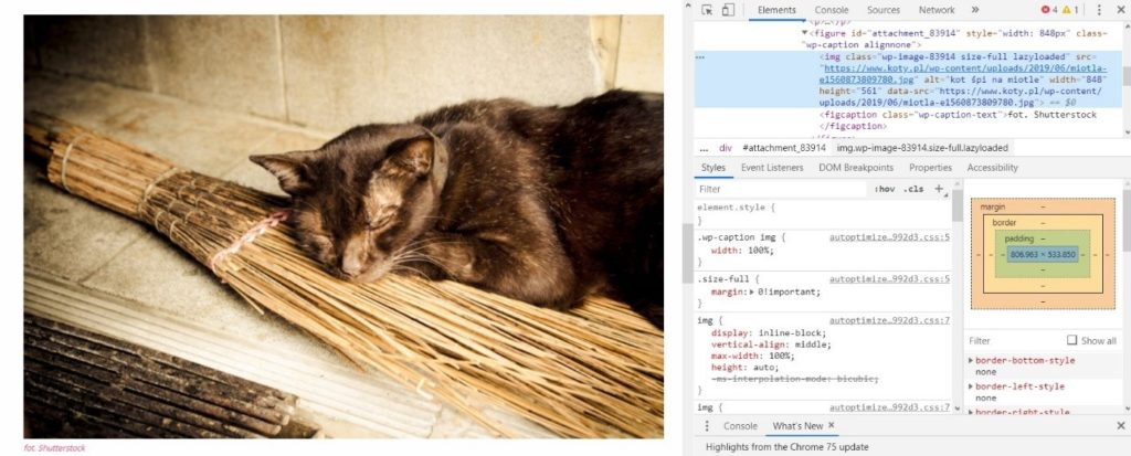 Dodawanie parametrów alt do obrazków na stronie WWW