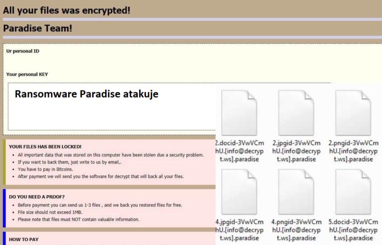 Ransomware Paradise: jak odzyskać zaszyfrowane pliki, dzięki narzędziu deszyfrującemu?