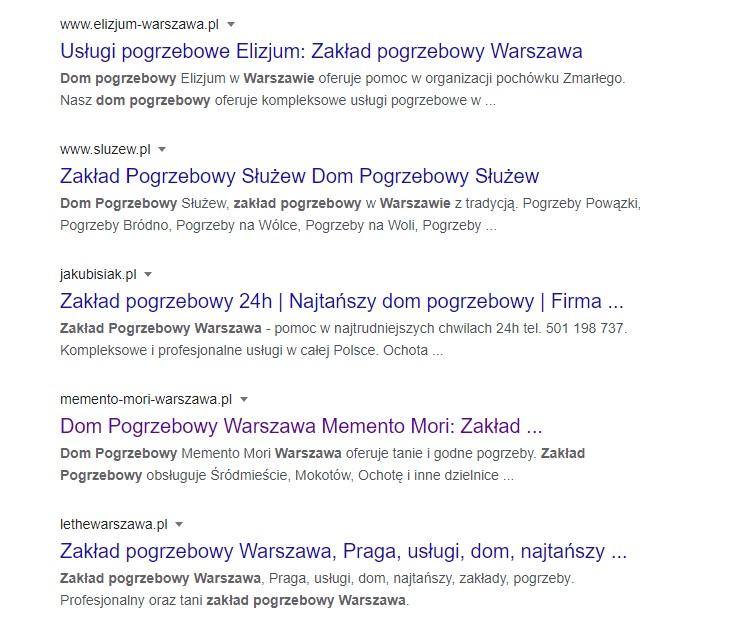 Wyniki wyszukiwania w Google dla stworzonej przez nas strony internetowej.