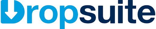 Logo Dropsuite
